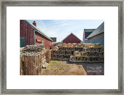 Lobster Traps In North Rustico Framed Print by Elena Elisseeva