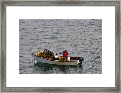 Lobsterman Cleans Trap Framed Print by Mike Martin