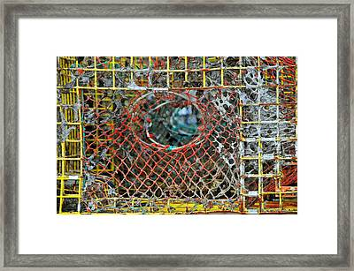Lobster's Point Of View Framed Print by Mike Martin