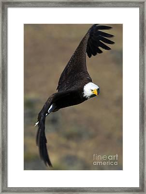Locked In Framed Print by Mike  Dawson