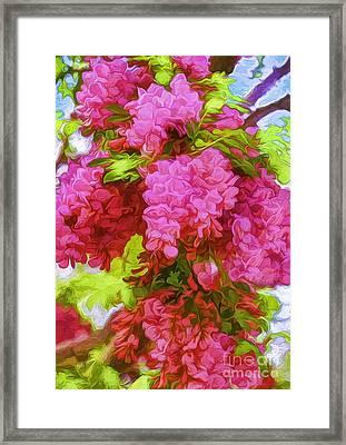 Locust Blooms-painted-2 Framed Print