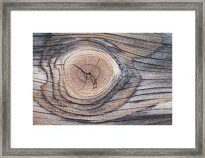 Lodgepole Pine Wood Patterns Framed Print by Peter Cairns
