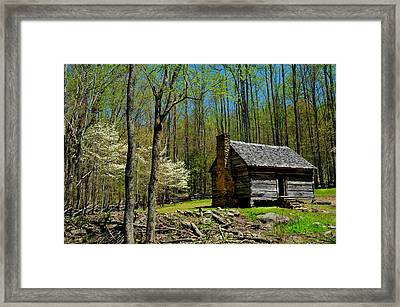 Log Cabin In The Smoky Mountain National Park Framed Print