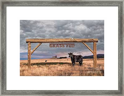 Log Entrance To Grass Fed Angus Beef Ranch Framed Print by Susan McKenzie