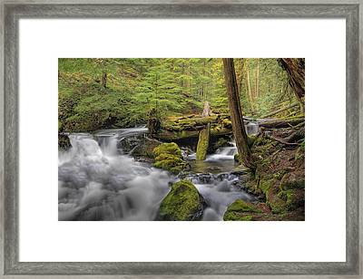 Log Jam Framed Print by David Gn