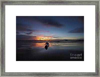 Framed Print featuring the photograph Logged Out  by Gary Bridger