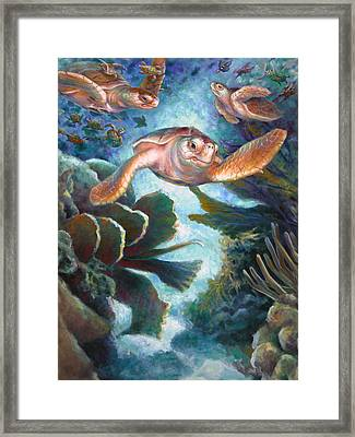 Loggerhead Sea Journey II Framed Print by Nancy Tilles