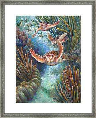 Loggerhead Sea Journey IIi Framed Print by Nancy Tilles