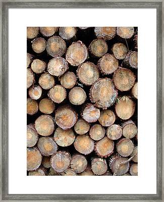 Logs Faces Framed Print by Michel Mata