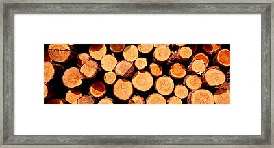 Logs Framed Print by Panoramic Images