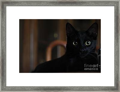 Loki The God Of Mischief  Framed Print by Jennifer E Doll