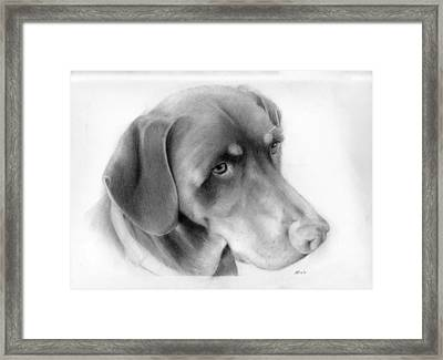 Lola Framed Print by Kendrick Roy