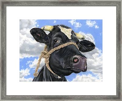 Lola Framed Print by Sarah Batalka
