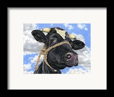 Cow Art Framed Prints