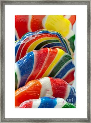 Framed Print featuring the photograph Lollipop  by Gunter Nezhoda