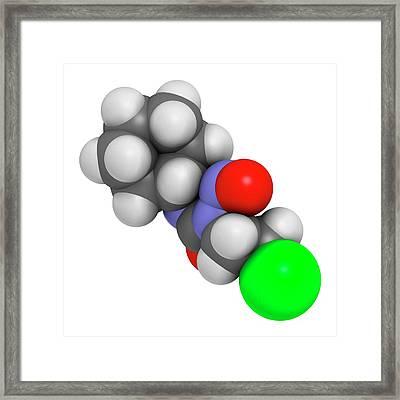 Lomustine Brain Cancer Chemotherapy Drug Framed Print