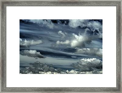 Lone And Free Framed Print