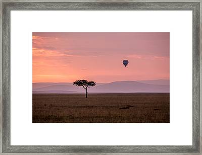 Lone Balloon Over The Masai Mara Framed Print by June Jacobsen