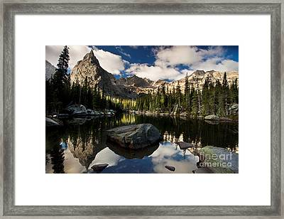 Lone Eagle  Framed Print by Steven Reed
