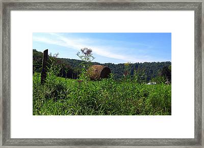 Lone Hay Round Framed Print by Willy  Nelson