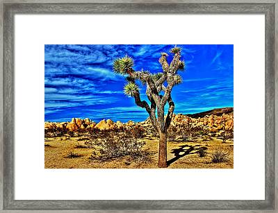 Framed Print featuring the photograph Lone Joshua by Benjamin Yeager