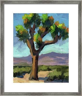 Lone Joshua Tree Framed Print by Diane McClary