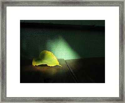 Framed Print featuring the photograph Lone Leaf by Paul Foutz