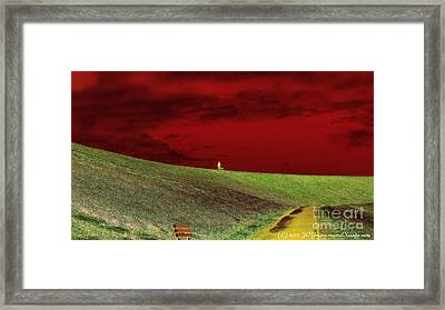 Lone Man And His Best Friend Framed Print by JCYoung MacroXscape