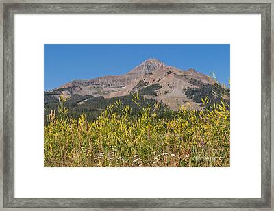 Framed Print featuring the photograph Lone Mountain And Wildflowers by Charles Kozierok