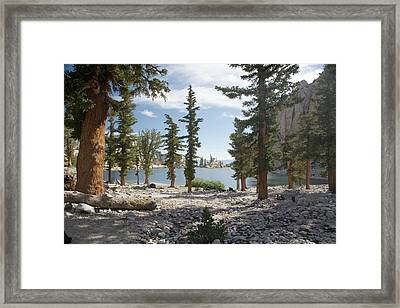 Lone Pine Lake Shoreline Framed Print