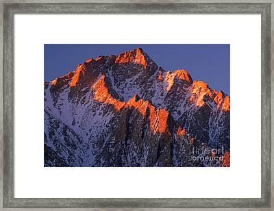 Lone Pine Peak - February Framed Print by Inge Johnsson