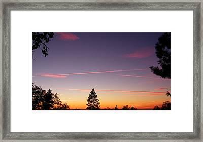 Lone Pine Framed Print by Tom Mansfield