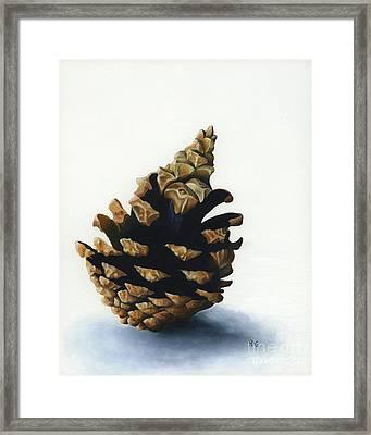 Lone Pinecone Framed Print