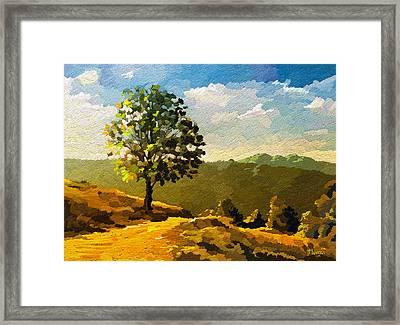 Lone Ranger Framed Print by Anthony Mwangi