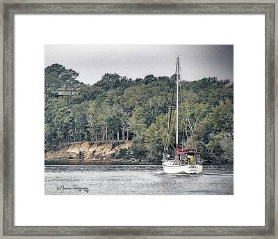 Lone Sailor In Snow's Cut Framed Print