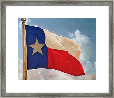 Lone Star Flag Framed Print