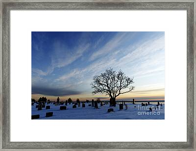 Lone Tree And Cemetery Framed Print