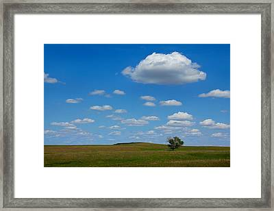 Lone Tree Bluff Framed Print