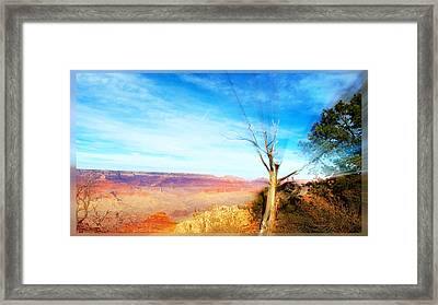 Lone Tree Canyon Framed Print
