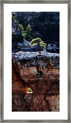 Lone Tree Heart Framed Print by Alfredo Martinez
