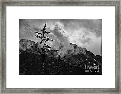 Lone Tree Framed Print by JRP Photography