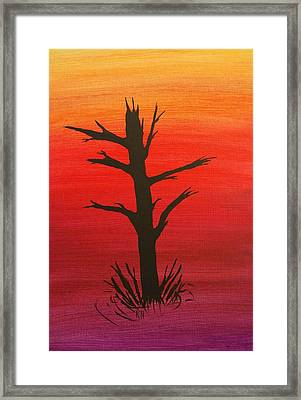 Lone Tree Framed Print by Keith Nichols