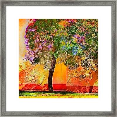 Lone Tree Orange Wall - Square Framed Print