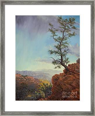 Lone Tree Struggle Framed Print