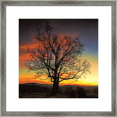Lone Tree Sunset At Jump Off Rock Framed Print