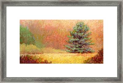 Lone White Pine II Framed Print