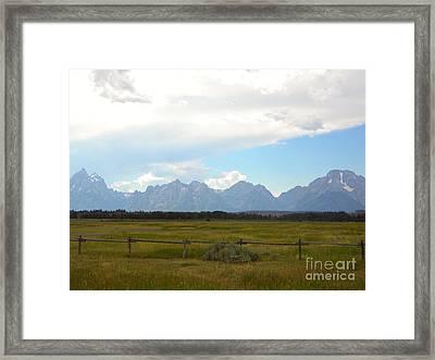 Lone Wilderness Framed Print by Kim Petitt