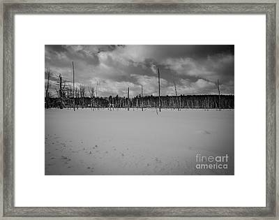 Loneliness Framed Print by Sue OConnor