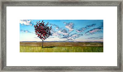 Lonely Autumn Tree Framed Print by Michael Dillon