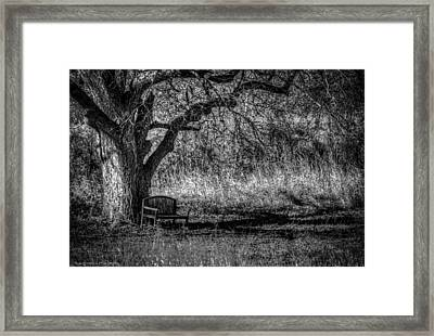 Lonely Bench Framed Print by Ross Henton